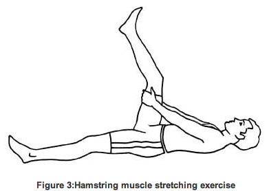 Easy Stretches & Exercise Program for Low Back Pain Relief ...
